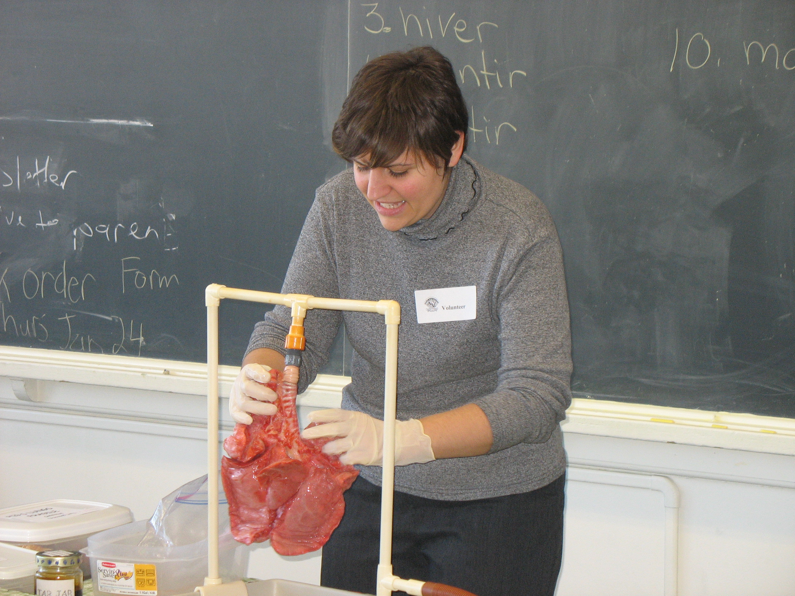 Photo of a public health nurse demonstrating the effects of tobacco on pig's lungs