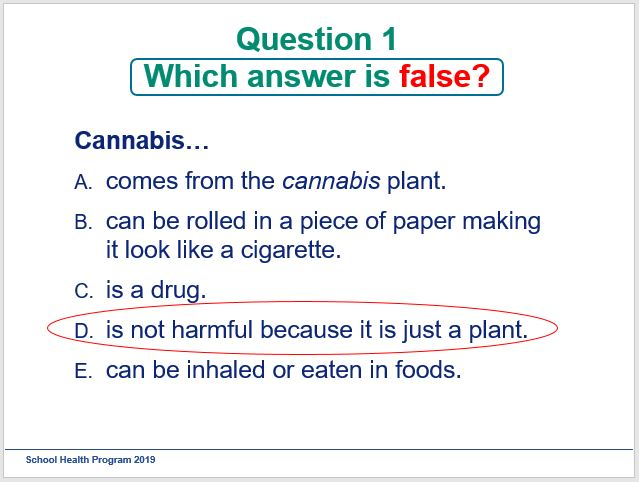 Photo of presentation slide with question on cannabis