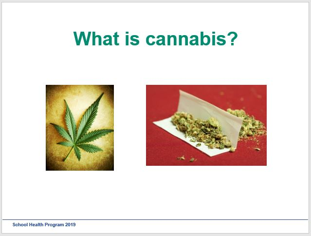 Photo of slide in Cannabis Presentation, showing a cannabis leaf