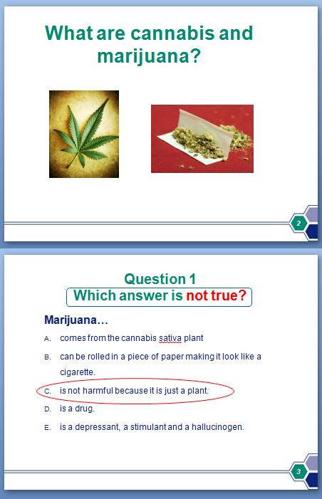 Photo of Substance Presentation PowerPoint slide
