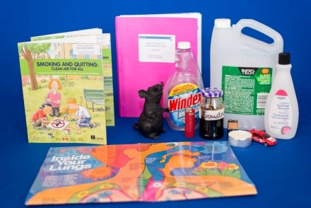 Photo of products found in cigarettes, present in the Poison in Tobacco kit