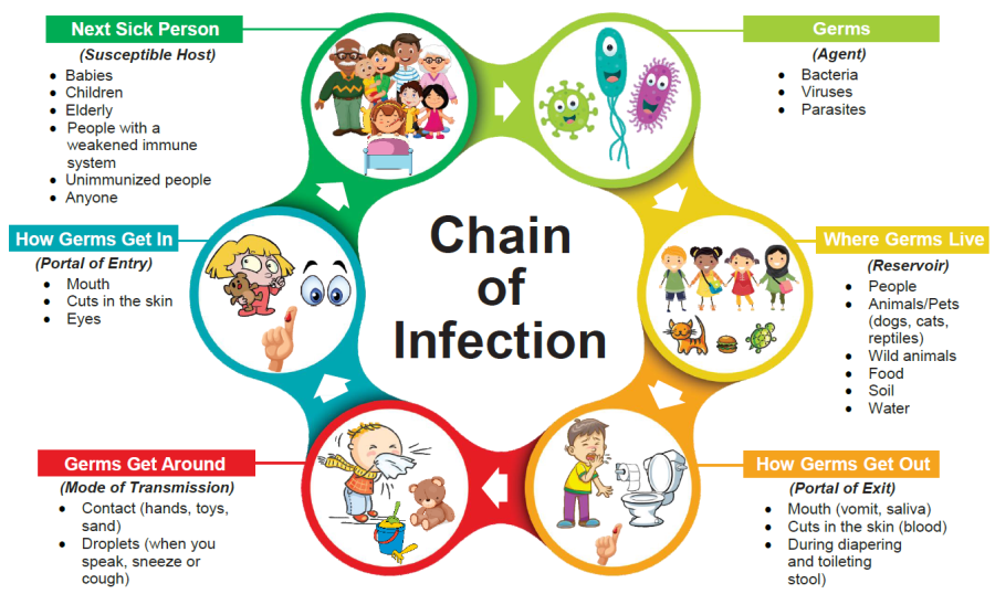 Diagram showing the chain of infection for germs