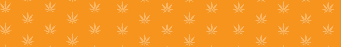 An orange background with cannabis leaves