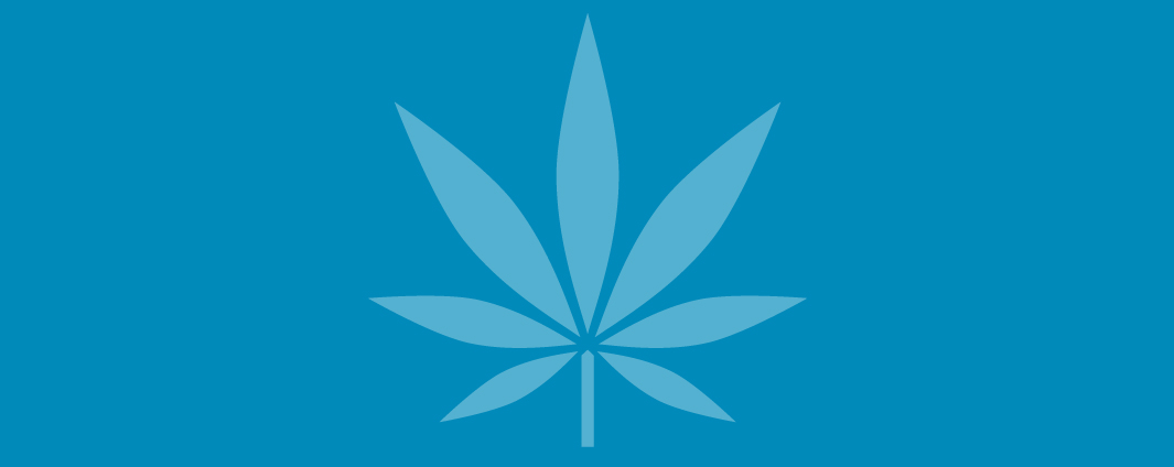 A illustrated cannabis leaf