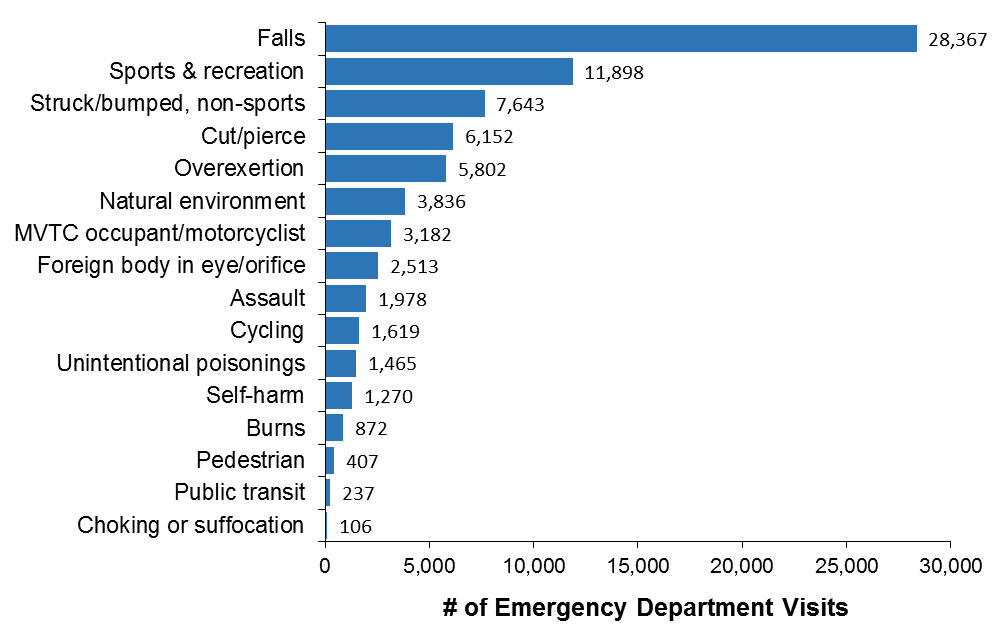 Horizontal bar chart of the leading causes of injury-related emergency department visits for Ottawa residents, all ages, in 2017