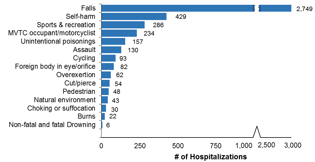 Horizontal bar chart of the leading causes of injury-related hospitalizations for Ottawa residents, all ages, in 2017