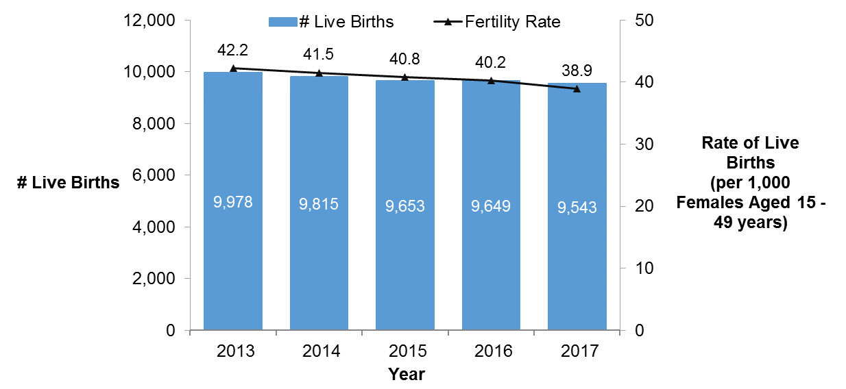 A graph showing the number of live births and the fertility rate for 15 to 49 year olds in Ottawa declining between 2013 and 2017.