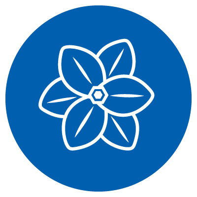 Vector Image of a flower
