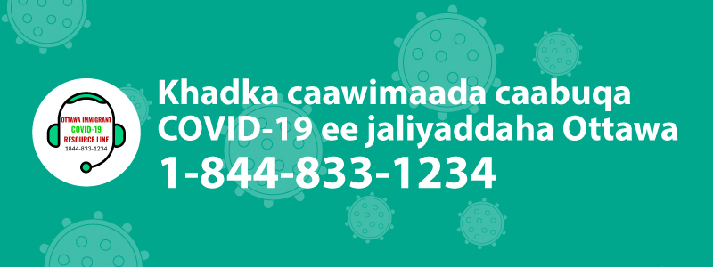 Ottawa Immigrant COVID-19 resource line logo and phone number 1-844-833-1234