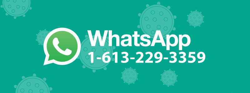 WhatsApp logo and phone number 1-613-229-3359